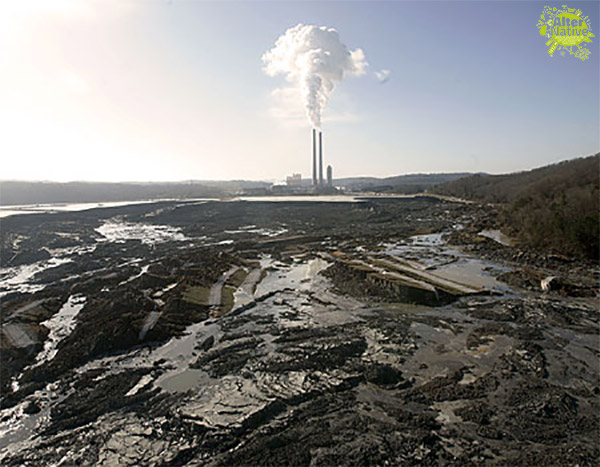 crisi ecologica globale